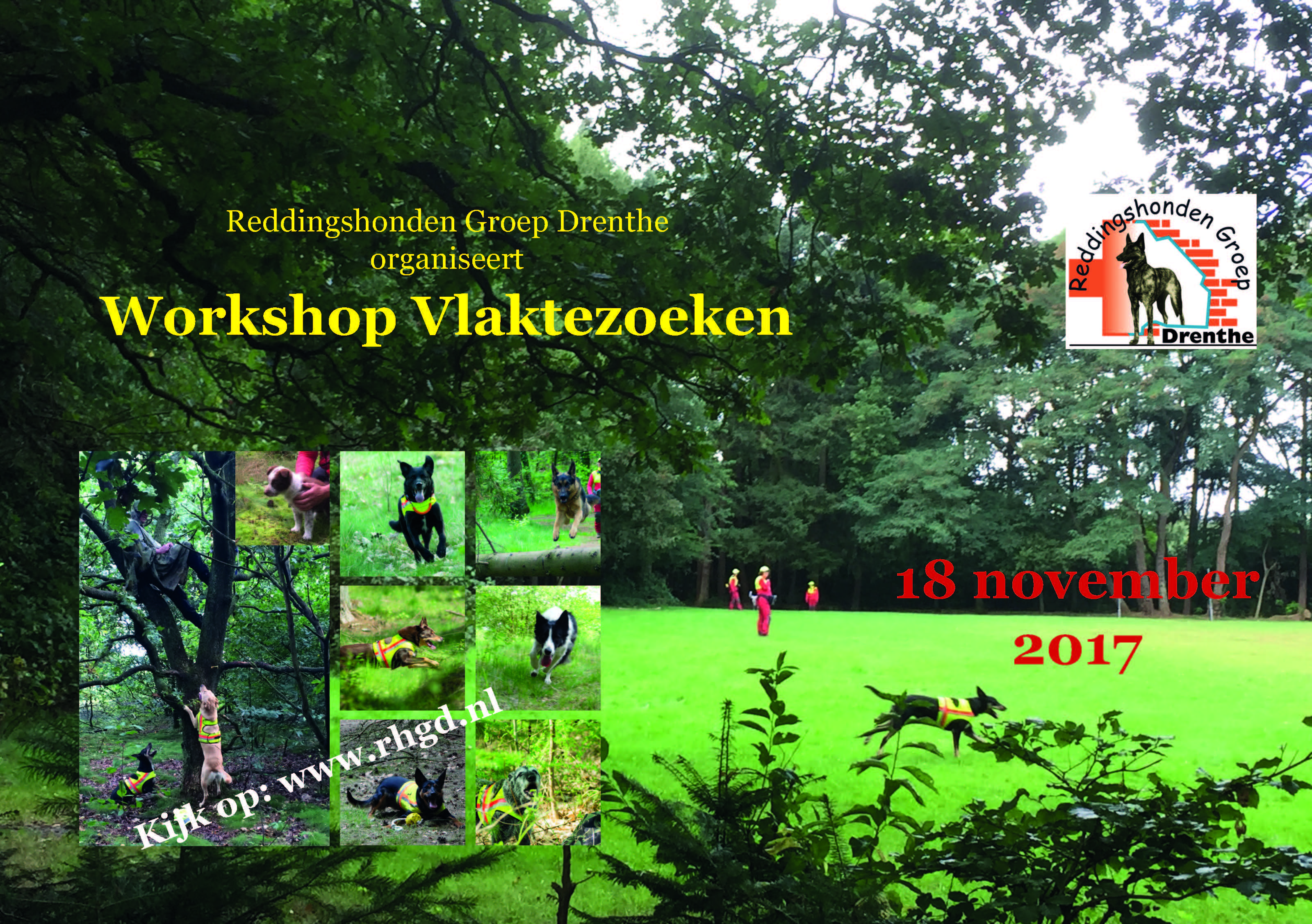 Flyer RHGD Workshop Vlakte nov 2017