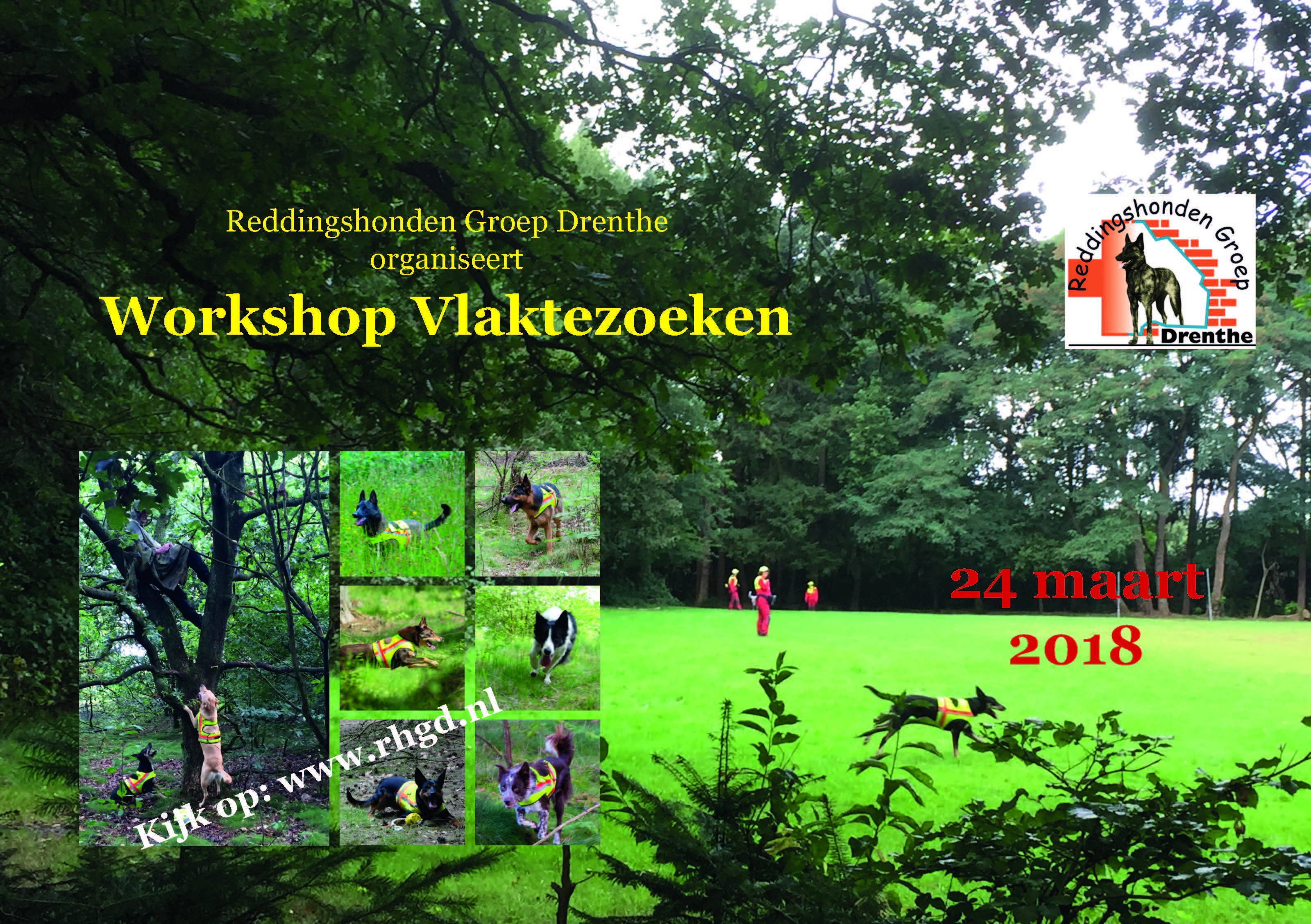 Flyer RHGD Workshop Vlakte mrt 2018
